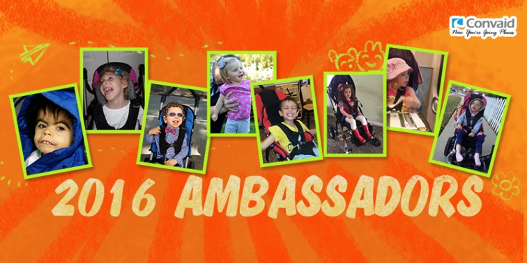ambassador graphic for press release 2016